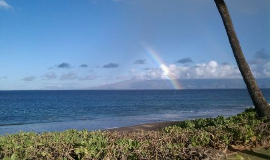 Maui rainbow at breakfast one morning