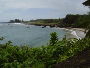 Along the Road to Hana