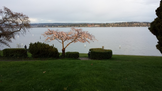 Lake Washington, from Madison Park at dusk, Seattle, WA