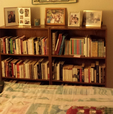 Bookcase cropped 20150113_210607